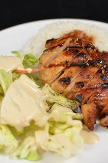 Sliced grilled teriyaki chicken and a salad on a plate