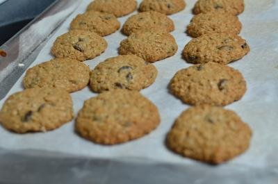 3 rows of oatmeal raisin cookies on a baking sheet