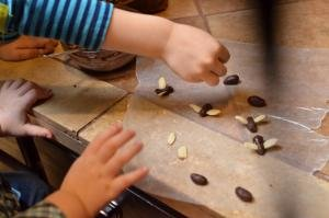 Kids making chocolate bee garnish on a table using almond slices for wings