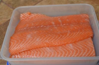 Salmon fillets in a plastic container covered in salt and sugar