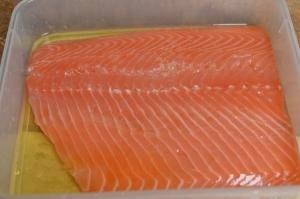 Salmon covered in liquid smoke mixture in plastic tub