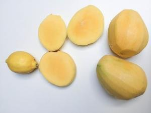Mangos peeled and 2 of them are cut in half and a lemon besides the mangos
