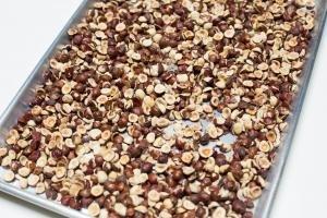 Hazelnuts on a baking pan
