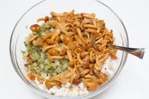 Mushrooms, chicken,, pickles and carrots all diced and placed together in a bowl
