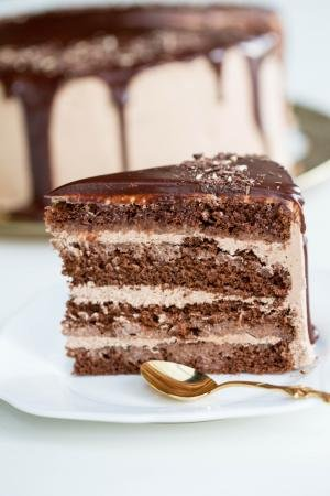 A Slice of Cake Prague on a plate