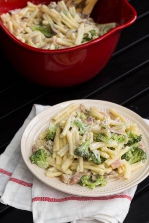 Creamy Chicken Pasta with Broccoli on a plate standing on top of a kitchen towel