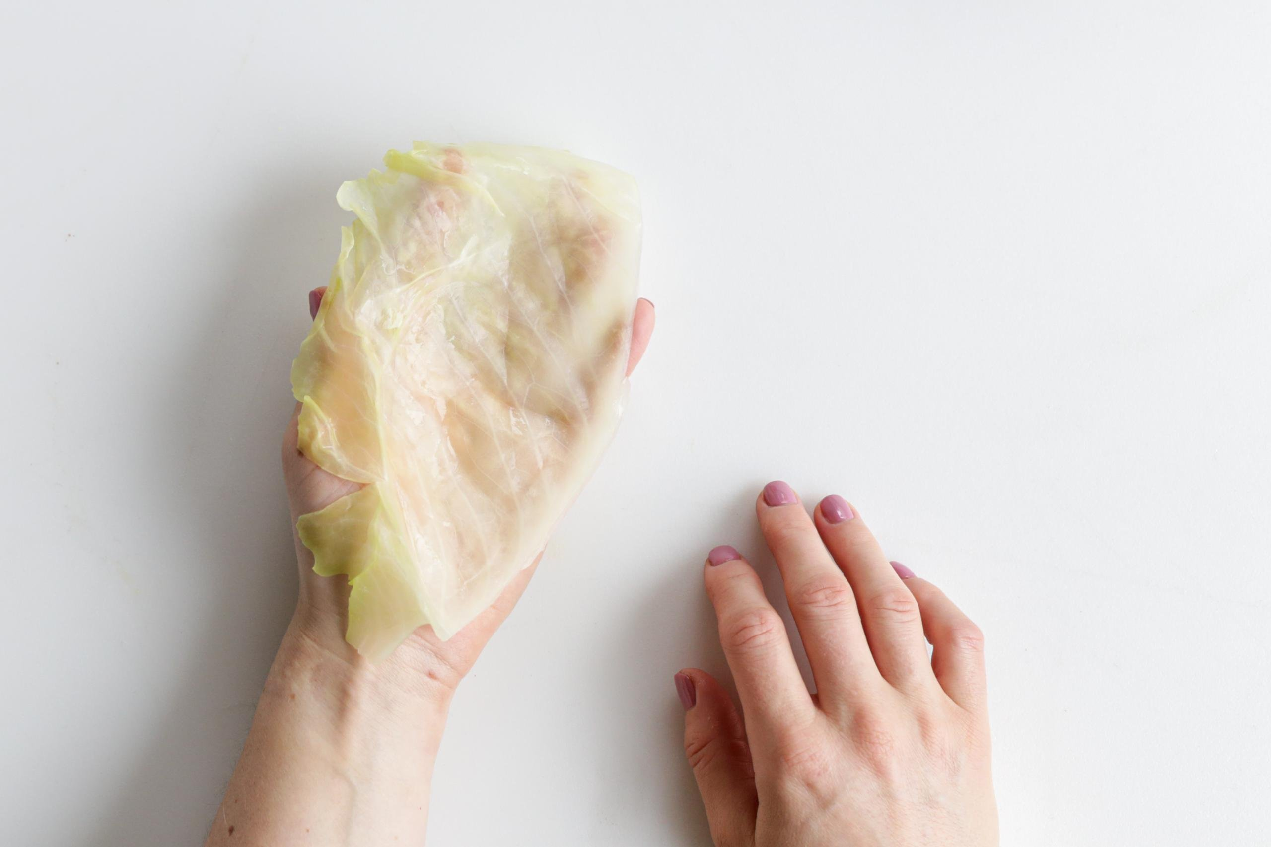 Cabbage leaf on a hand