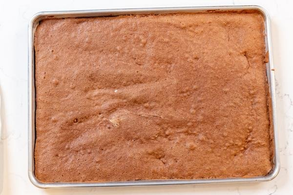 sponge cake on a baking sheet