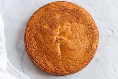 a sponge cake on a counter