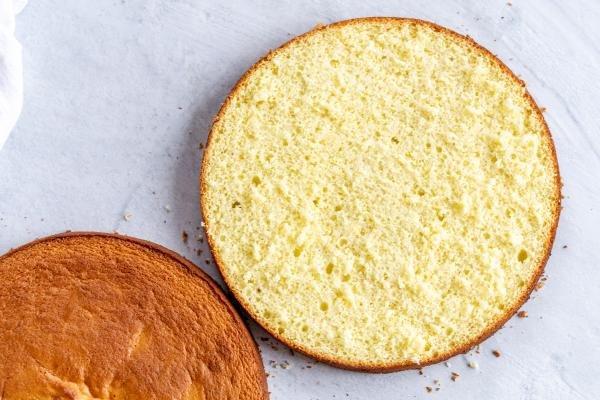 A sponge cake cut open