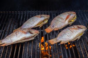 Tilapia on a grill