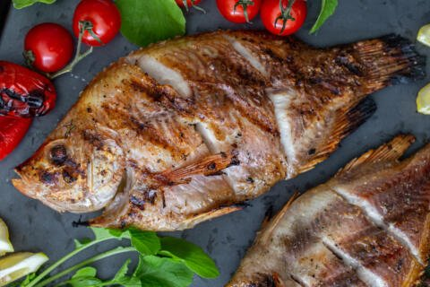 Grilled tilapia on a dish with tomatoes