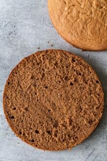 Chocolate sponge cake cut open