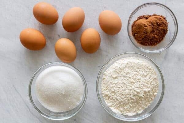 Ingredients for chocolate sponge cake