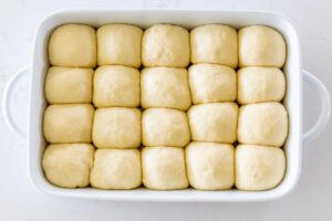 unbaked dinner rolls in a pan