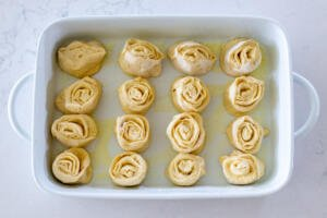 Buns in a buttered pan